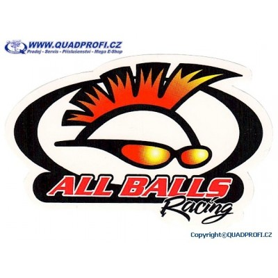 ON-LINE Katalog All Balls Racing - Winderosa - Parts