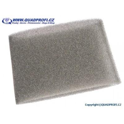 Air filter B - 17262-169-000