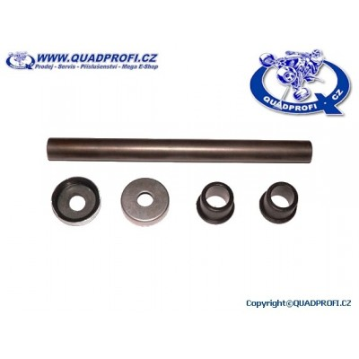 A-Arm Bearing Kit for SMC Jumbo 250 300 301 302 350 R5