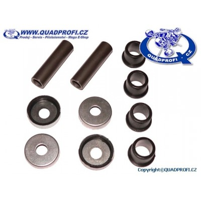 A-Arm Bearing Kit for SMC Jumbo 250 300 301 302 320 350 R5