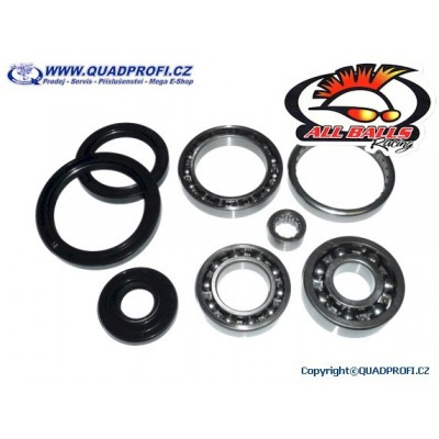 Differential Bearing and Seal Kit - 25-2066