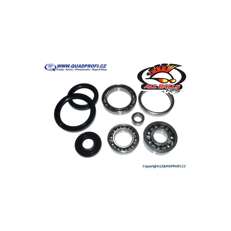 All Balls 25-2066 Differential Bearing and Seal Kit Front
