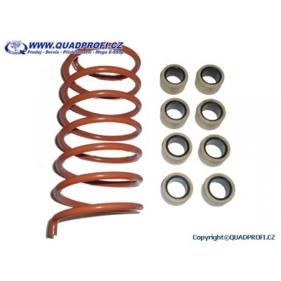 CVT Tuning Kit Suzuki Kingquad 750 EFi
