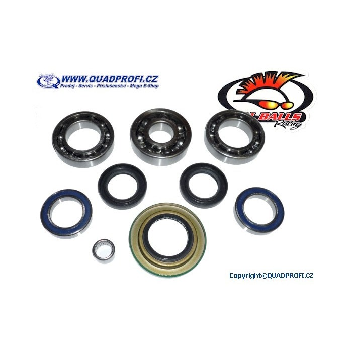 Differential Bearing and Seal Kit - 25-2068