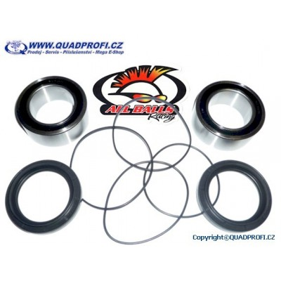 Wheel Bearing Rear - 25-1618 for Raptor 700 YFZ 450
