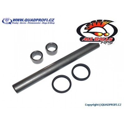 Swing Arm Bearing Kit - 28-1187
