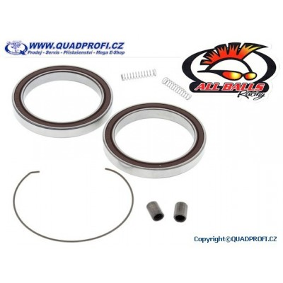 One Way Clutch Bearing Kit - 25-1716