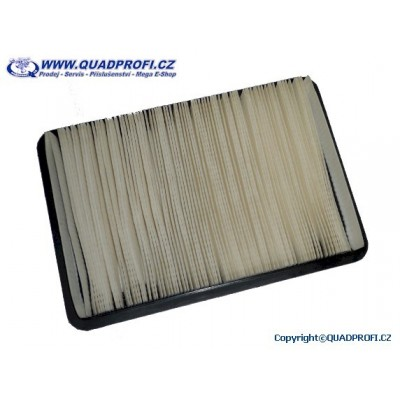 Air Filter - 17210-501-000