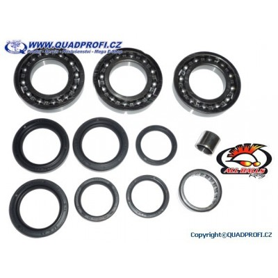 Differential Bearing and Seal Kit - 25-2065