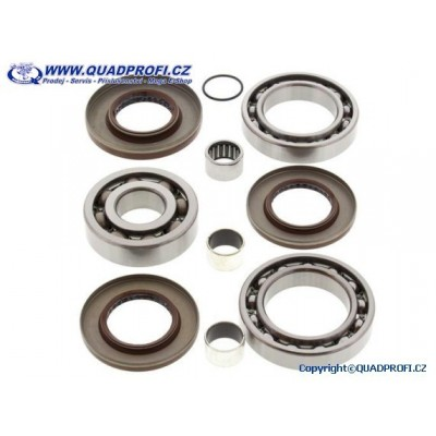 Differential Bearing and Seal Kit - 25-2080