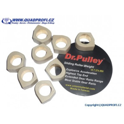 CVT sliding roll Dr.Pulley SR - 30x18