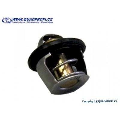 Termostat - A15300-E10-000 - pro Access 250 300