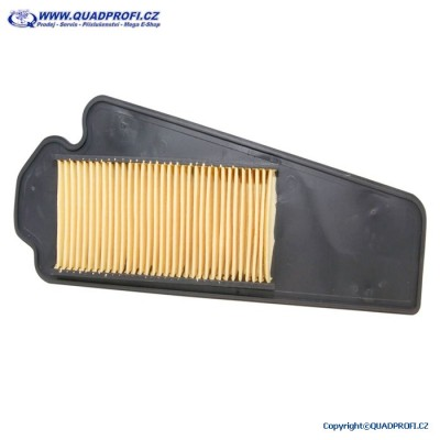Air filter for Eton Yukon 150