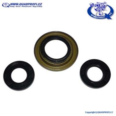 Differential Seal Kit QPP - 25-2069-5